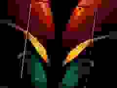 Giới thiệu smartphone màn hình gập Galaxy Z Fold2 vừa ra mắt của Samsung