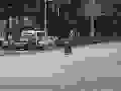 Người phụ nữ đi xe máy với kiểu dừng đèn đỏ khó hiểu