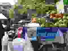 Bán dừa dạo kiếm tiền triệu mỗi ngày