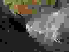 Cảnh tượng thác nước chảy ngược lên trời