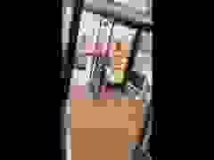 Gấu liều lĩnh mò vào cửa hàng trộm bim bim
