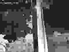 Vụ cướp đồ manh động tối 15/9 tại Cự Khối, Long Biên, Hà Nội