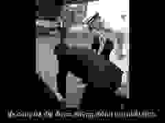 Video chia tay chính trường xúc động của Thủ tướng Nhật Bản Abe Shinzo