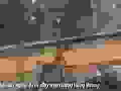 Gió bão thổi bay người đi xe máy trên đường ở Huế