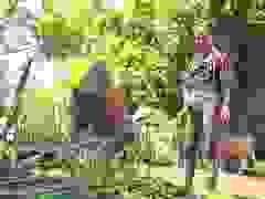 Phú Yên: Tạo sinh kế giúp đồng bào dân tộc thiểu số thoát nghèo bền vững