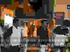 Hướng dẫn viên du lịch bị nhóm người lừa vào khách sạn 5 sao rồi cưỡng bức