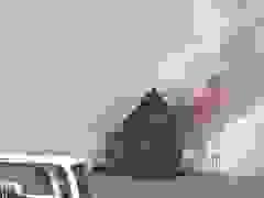 Căn hộ nổi cao cấp trên biển bốc cháy ngùn ngụt