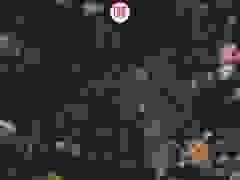 Hiện trường máy bay Su-30 Nga bị đồng đội bắn rơi