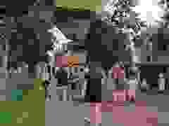 Khinh khí cầu bất ngờ mất độ cao, rơi xuống đất