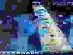 Thanh niên giả vờ mua 2 nhẫn vàng rồi cướp trong chớp mắt