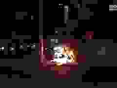 Người đàn ông hốt hoảng tháo chạy khỏi xe máy bốc cháy ngùn ngụt