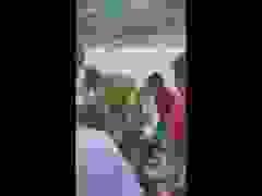 Dân vây bắt cá sấu ở Cà Mau. (Nguồn: Facebook L.P.L)