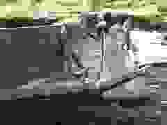 Cận cảnh kênh thủy lợi bị hư hỏng sau khi sửa chữa