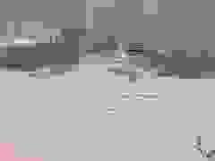 Lũ lớn cuốn trôi cả cây cầu, gần 1.500 người bị cô lập hoàn toàn