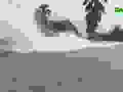 TP Vinh bị nước bủa vây