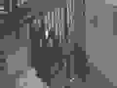 Hai tên trộm doạ bắn người dân khi bị phát hiện đột nhập công ty