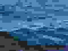 Hai người phụ nữ chèo thuyền kayak suýt bị cá voi lưng gù nuốt chửng