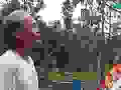 Người dân chia sẻ về thiệt hại vườn cây ăn quả sau bão