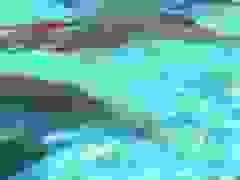 Robot cá voi được kỳ vọng có thể thay thế cá voi thật trong công viên
