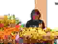 Phó Chủ tịch nước Đặng Thị Ngọc Thịnh phát biểu