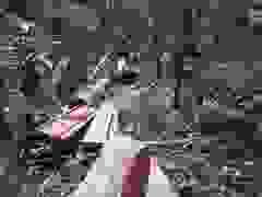 "Cận cảnh cánh rừng của huyện Ia Grai bị ""xẻ thịt"""
