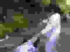 Nữ sinh bị nhóm bạn vây đánh dã man, nhiều người xung quanh hò hét cổ vũ