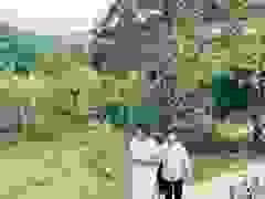 Việt Hoàn dẫn Trọng Tấn, Đăng Dương thăm khu nuôi động vật tại trang trại 10.000m2.