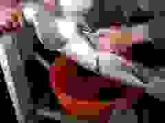 Công đoạn lấy trứng cá hồi thu hút gần 10 triệu lượt xem