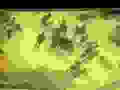 Lao nhanh từ hẻm nhỏ ra đường, ba học sinh súyt mất mạng dưới bánh xe ben