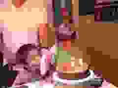 """Chết cười với """"cuộc chiến"""" giành thổi nến bánh sinh nhật"""