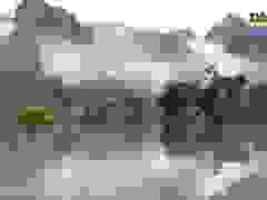 Video: Du lịch Quảng Bình nỗ lực để tái khởi động sau lũ
