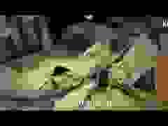 Những bí ẩn trong các ngôi mộ cổ ở Saqqara, Ai Cập