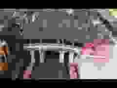 Theo chân khách Tây khám phá vẻ đẹp khắp Việt Nam