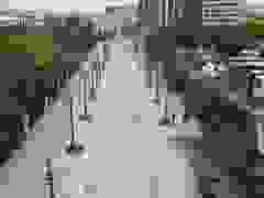 Hàng loạt cây xanh chết khô trên khu đất vàng của Hà Nội