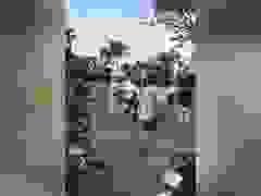 Xôn xao clip CSGT bị đánh tới tấp ở Sài Gòn