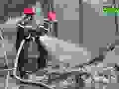 Cháy kho phế liệu rộng 1.000 m2