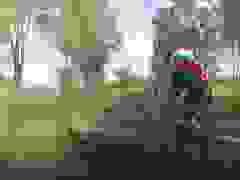"""Chuột túi """"tung cước"""" đá bay người đạp xe văng xuống lề đường"""