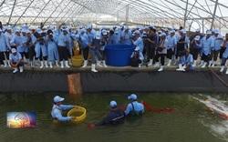 Thủy sản Việt Nam như thế nào sau dịch Covid-19