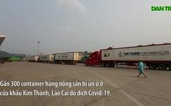 Lào Cai: Nhu cầu xuất khẩu tăng mạnh, hàng hóa ùn ứ tại cửa khẩu Kim Thành