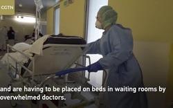 Cảnh quá tải bên trong bệnh viện tuyến đầu của ổ dịch lớn nhất Italia