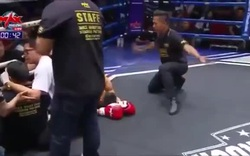 Võ sĩ Muay Thái tung cú sút khiến cả đối thủ và... trọng tài ngất xỉu