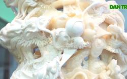 Chiêm ngưỡng bức Cửu Long Tranh Châu bằng vỏ sò nghìn năm tuổi