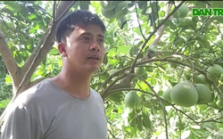 Thầy giáo làm trang trại thu 200 triệu đồng mỗi năm