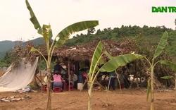 Cho rằng chưa đền bù thỏa đáng, dân lập trại ngăn cản thi công ở hồ Mỹ Lâm