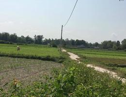 """""""Cò"""" tung tin Đà Nẵng thành lập quận mới để thổi giá đất"""