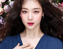 """Sau cái chết đau thương của Sulli, chính phủ Hàn Quốc muốn ra """"luật Sulli"""" để bảo vệ nghệ sĩ"""