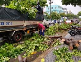 Cây xanh đổ đầy đường phố Đà Nẵng