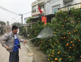Cuộc sống thôn Hoành trở lại bình yên, chốt chặn vào Đồng Tâm được dỡ bỏ