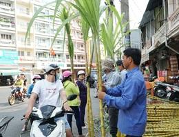Người Sài Gòn đổ xô mua mía cầu tài đầu năm