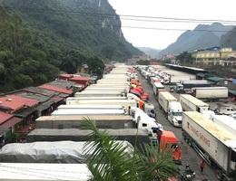 """Hàng trăm xe trái cây tươi vẫn """"bất động"""" ở cửa khẩu, chờ sang Trung Quốc"""